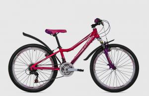 Bicicleta FULGER ANGLE 24